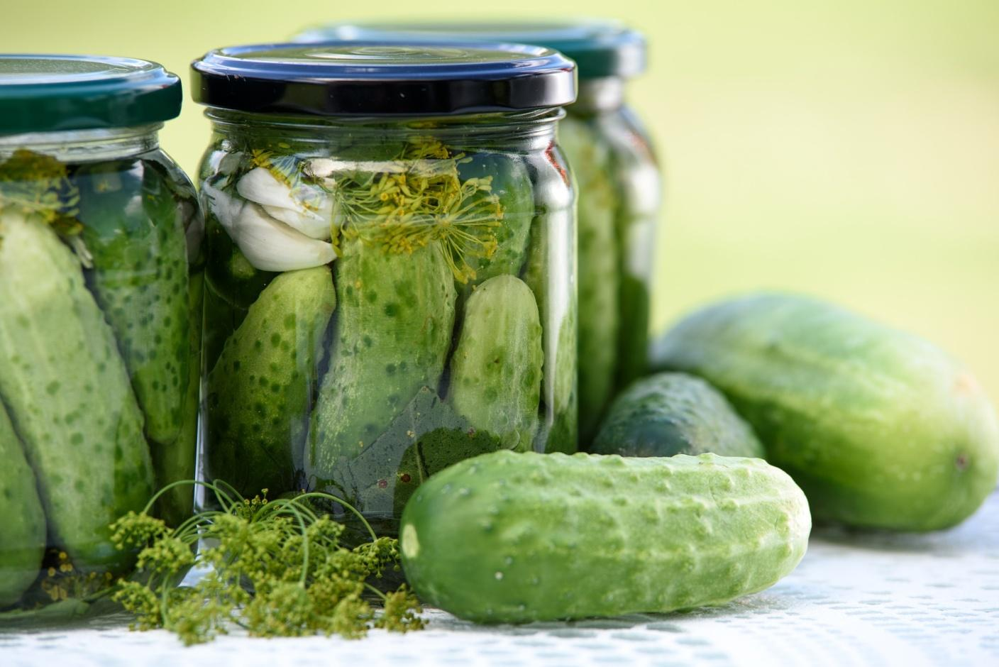 C:\Users\Admin\Downloads\pickled-cucumbers-1520638_1920 (1).jpg